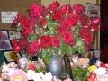 treloars-roses
