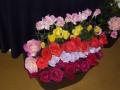 treloars-roses3