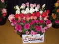 treloars-roses4